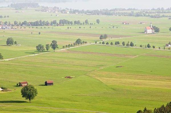 1 Hektar Kaç Dönüm? Arazi Ölçüm Birimleri