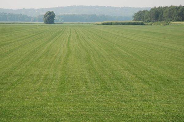 1 Hektar Kaç Metrekare (M2)? Arazi Ölçümleri Nasıl Yapılır?